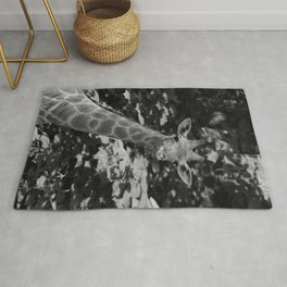 What's on Rug