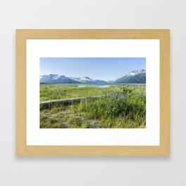 Along the Seward Highway, No. 2 Framed Art Print