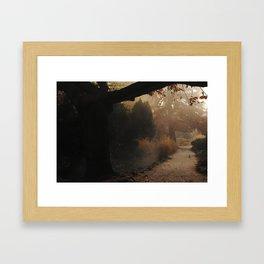 Natural mystique Framed Art Print