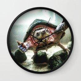 Terrified Turtle Wall Clock