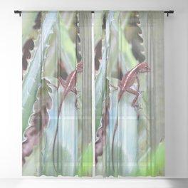 Watercolor Reptile Crested Anole Lizard 01, Aloe, Take Me Away... Sheer Curtain