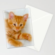 Quo - Kitten Photography By Giada Rossi Stationery Cards