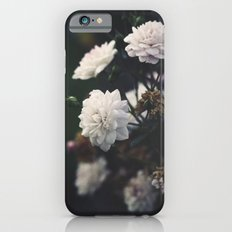 The Most Beautiful View iPhone 6 Slim Case