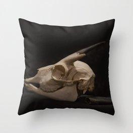 White Tail Deer Skull Throw Pillow