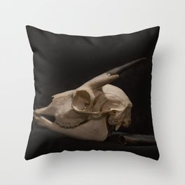White Tail Deer Skull Throw Pillow