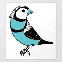 Teal Owl Finch Art Print