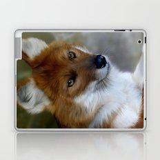 Dhole Laptop & iPad Skin