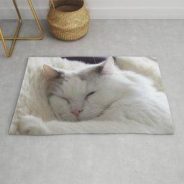 Ragdoll Cat Cuddles Rug