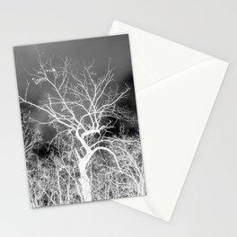Naked trees forest, negative black and white photo Stationery Cards