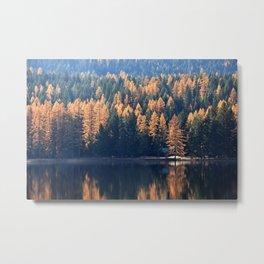 Lake Life Metal Print