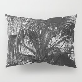 Sensual Palm Tree Leaves in Humid Night Sky Pillow Sham