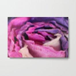 Vibrant Dried Rose Metal Print