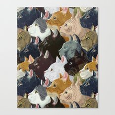 Never ending cats Canvas Print