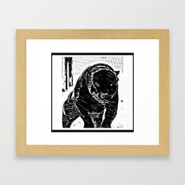Pit Bull Models: Khan 01-02 Framed Art Print