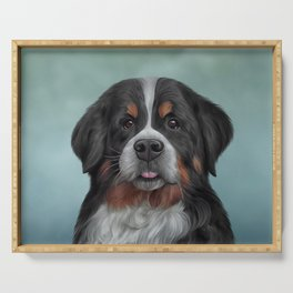 Drawing Bernese Mountain Dog 6 Serving Tray