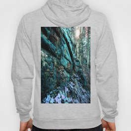 Enchanted Forest Wall Hoody