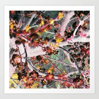 it maybe summer, it maybe spring, i can't remember_1 Art Print