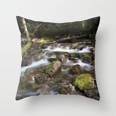 Paradise Creek I Throw Pillow