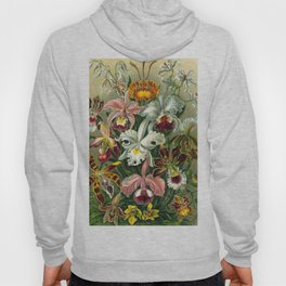 Victorian Orchids Floral Print-Ernst Haeckel Hoody