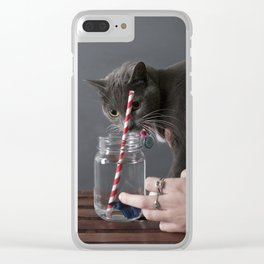 The Fish or The Cat Clear iPhone Case