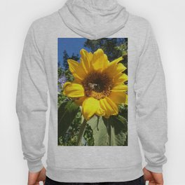 Bee on sunflower Hoody