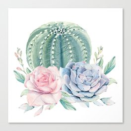 Cactus Rose Succulents Canvas Print