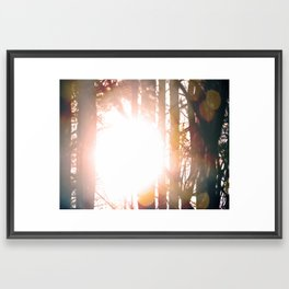 SunTree Framed Art Print