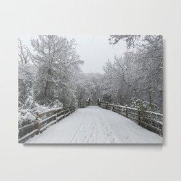 Winter Walk | Forest Metal Print