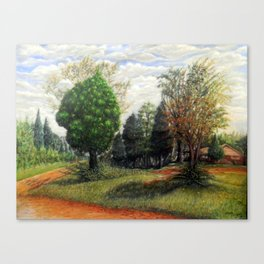 Shaded Pines Canvas Print