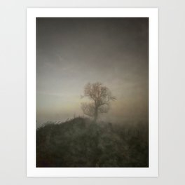 English Winter Days Walk in the Mist of Early Morning Art Print