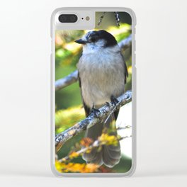 Gray is the new black! Clear iPhone Case