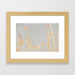 reed abstract 3 Framed Art Print
