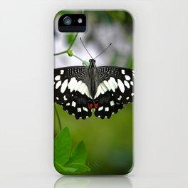 Butterfly Medium iPhone Case