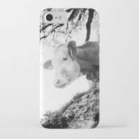cow iPhone & iPod Cases featuring COW by Julia Aufschnaiter