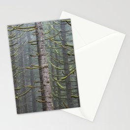 Pacfic Northwest Mountain Forest III - 108/365 Landscape Photography Stationery Cards