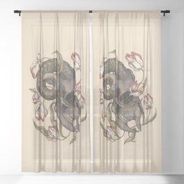 Breaking, Rectifying Sheer Curtain