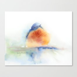 Elusive Bluebird Canvas Print