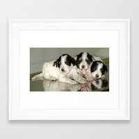 puppies Framed Art Prints featuring Three Puppies by Premium