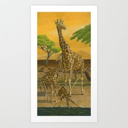 Giraffes at Sunset Art Print