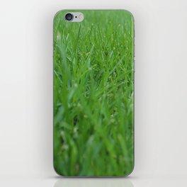 Summer Grass iPhone Skin