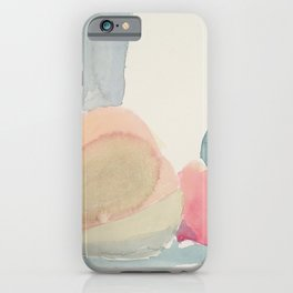 Opened Gourds iPhone Case