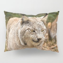 Fascinating Gorgeous Adult Lynx Walking Through Woods Close Up Ultra HD Pillow Sham