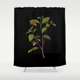 Impatiens Noli Tangere Mary Delany Delicate Paper Flower Collage Black Background Floral Botanical Shower Curtain