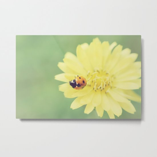 A Flower for My Lady Metal Print