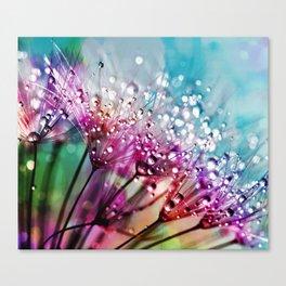 Dewdrops & Rainbows Canvas Print