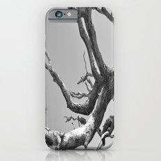 Driftwood Ladder B/W Slim Case iPhone 6s