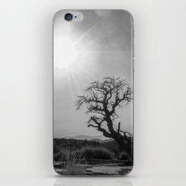 Desert Tree iPhone Skin