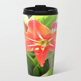 Orange Amaryllis Flower Blooms in Springtime  Travel Mug