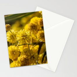 Blooming Mimosa Stationery Cards