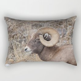Bighorn sheep eating with grass in mouth in Yellowstone National Park Rectangular Pillow